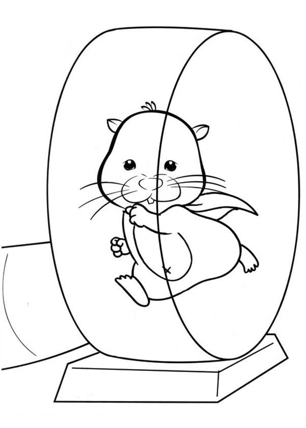 Pet-Hamster-Running-on-Exercise-Wheel-Coloring-Page